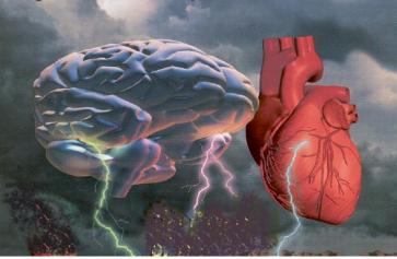 Brain-heart-electricity