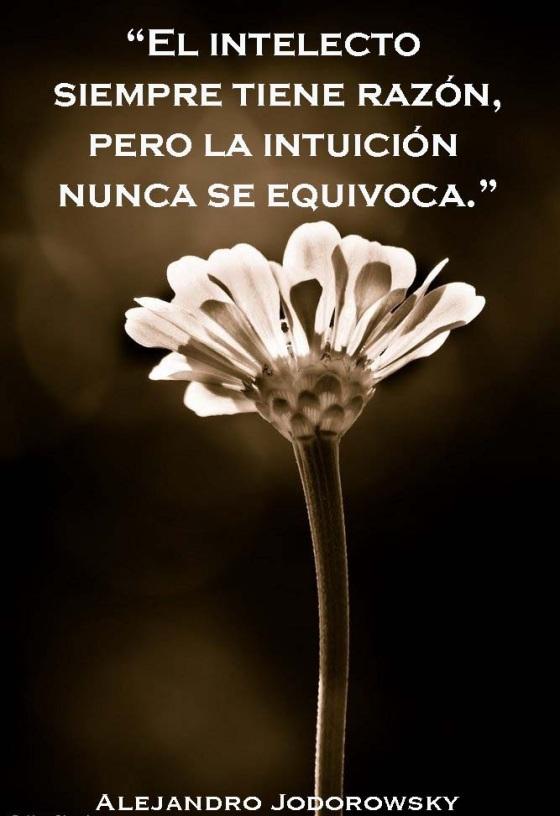 intelecto-e-intuicion